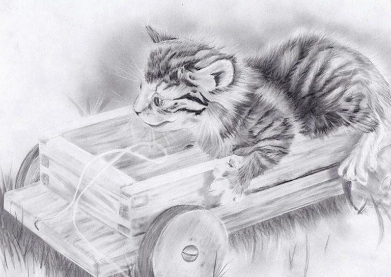 Katze_Rasterverfahren